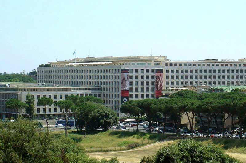 FAO Rome