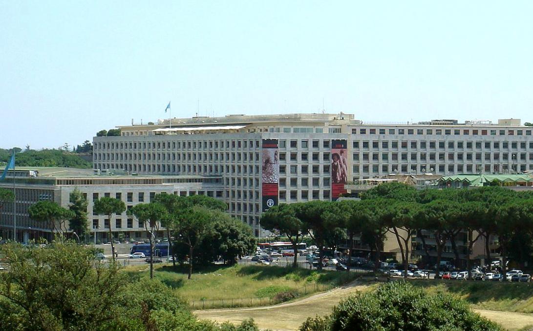 Siège de la FAO à Rome © wikimedia commons / Scopritore