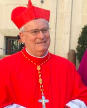 Cardinal Gualtiero Bassetti, Capture