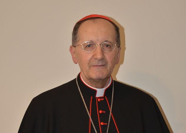 Cardinal Stella © Wikimedia commons