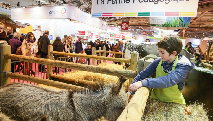Salon de l'agriculture, Paris 2017 © salon-agriculture.com