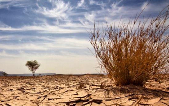 Fondation Jean-Paul II pour le Sahel © fondationjp2sahel.org