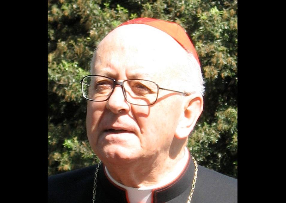 Cardinal Nicora © Wikimedia commons / Christoph Wagener