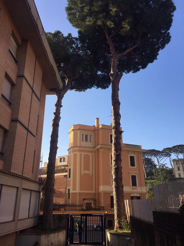 Pontifício Colégio Português Rome, facebook