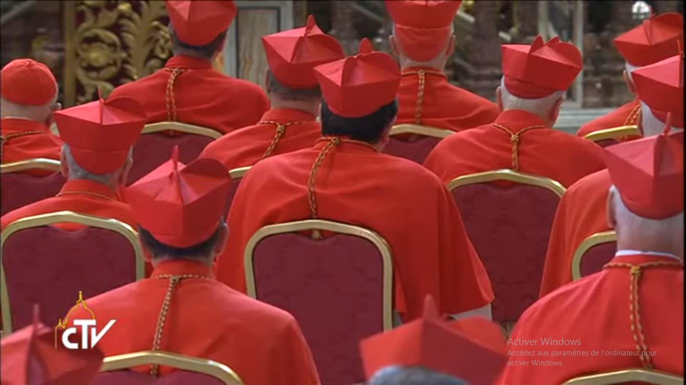 Collège cardinalice, consistoire 28/06/2017, capture CTV