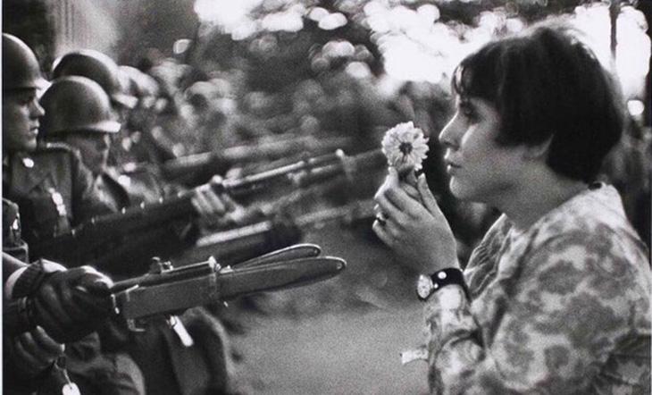 La fleur contre les armes © prieraucoeurdumonde.net