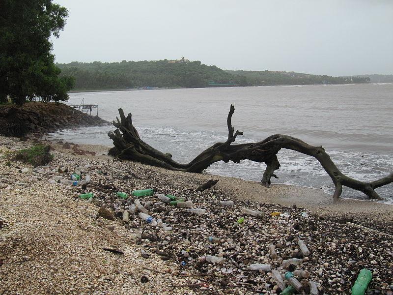 Pollution plastique dans les mers © Wikimedia commons / Hajj0