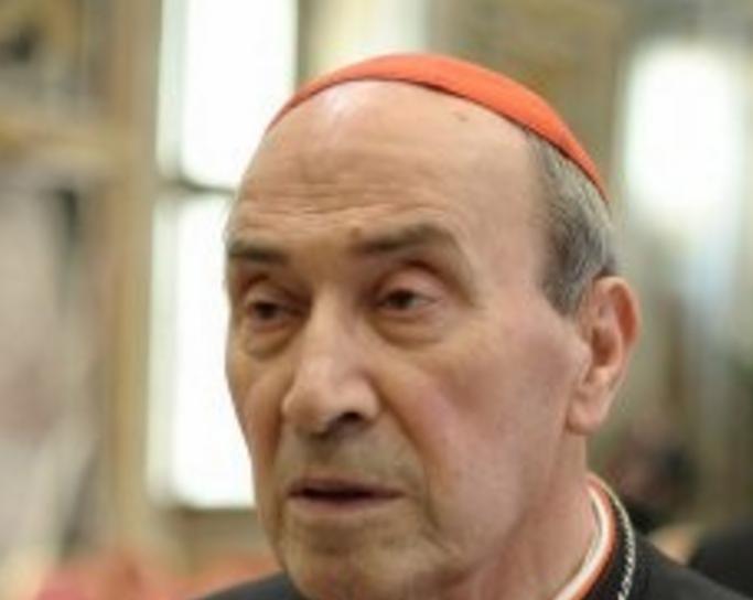 Cardinal De Paolis © vatican.va