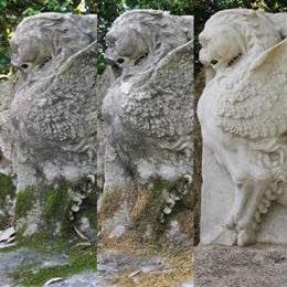 Restauration écologique dans les Jardins du Vatican © Musées du Vatican