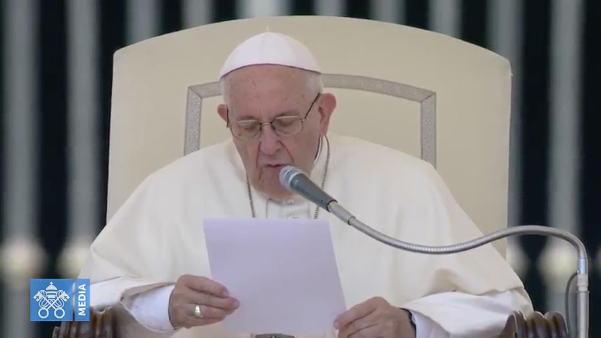 Audience du 20/6/2018, capture @Vatican Media