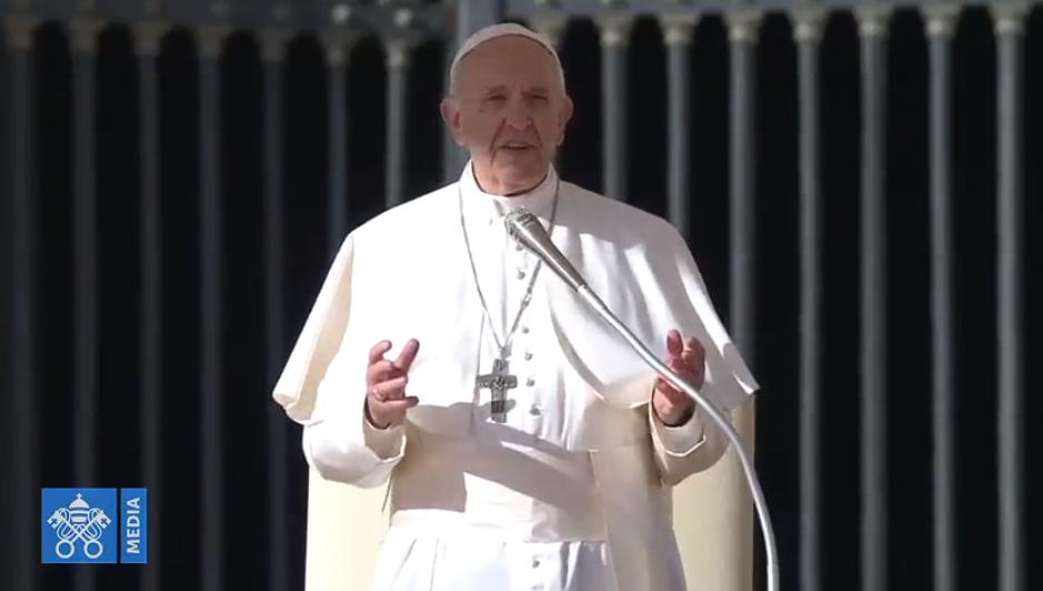 Audience générale du 7 nov 2018, capture Vatican News