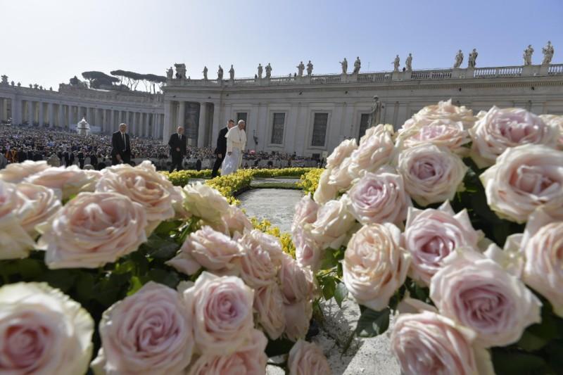 Audience du mercredi de Pâques, 24 avril 2019, roses © Vatican Media