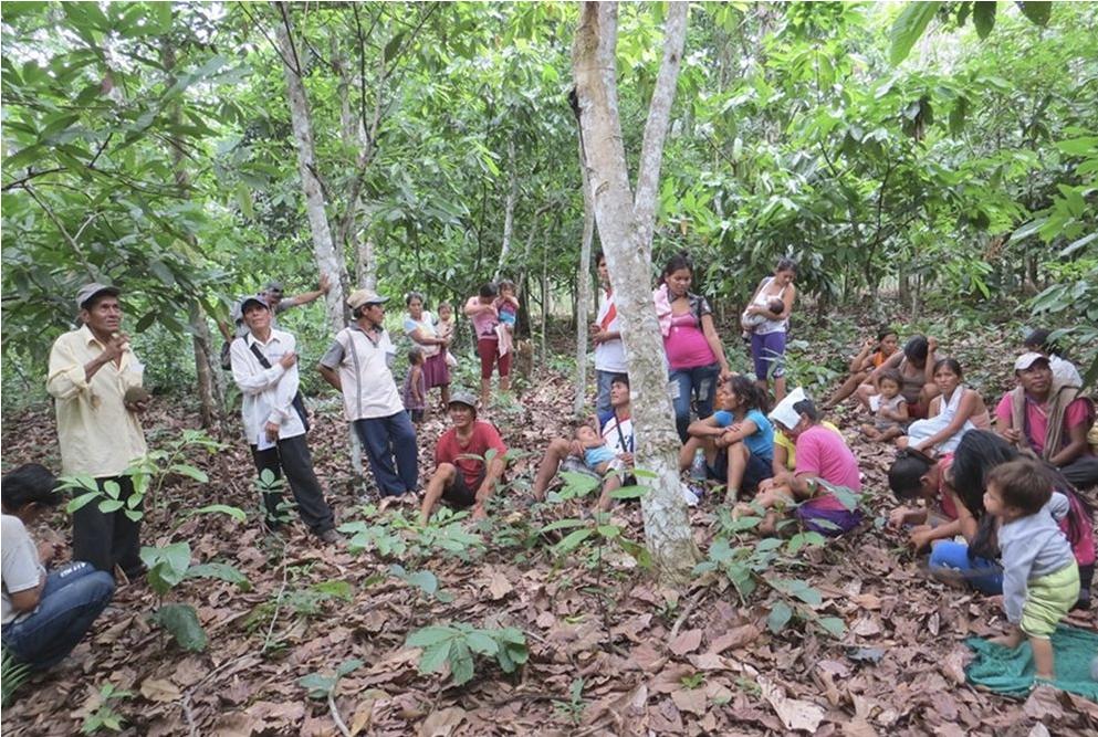 Amazonie @ jesuits.global