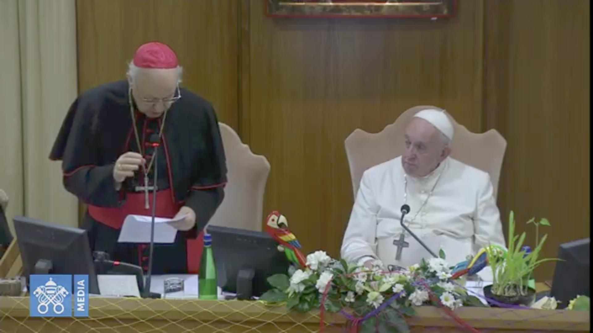 Synode, 26 oct. 2019, capture @ Vatican Media