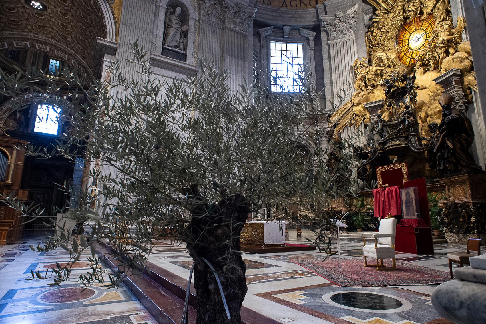 Basilique Saint-Pierre ornée pour les Rameaux © Vatican Media