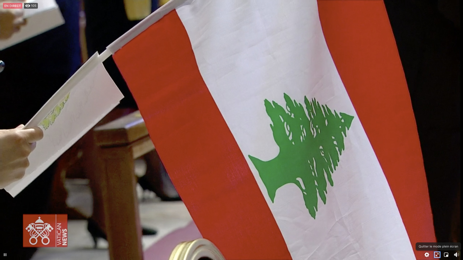 Drapeau du Liban, 1er juillet 2021, capture Zenit / Vatican Media